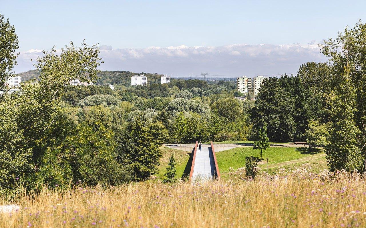 Kienbergpark-Foto-Konstantin-Boerner-03