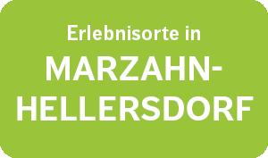 Erlebe Deine Region 2021 – Marzahn-Hellersdorf